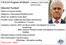 Turnbull-snapped-FRESH