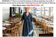 Save businesses - let them hibernate